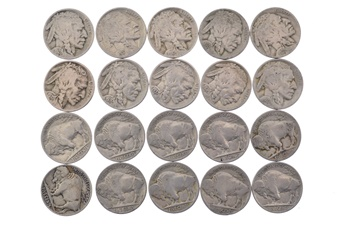 20 Pack Buffalo Nickel