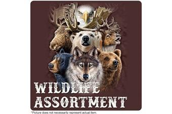 Closeout Wildlife Folder Grab Bag (4p