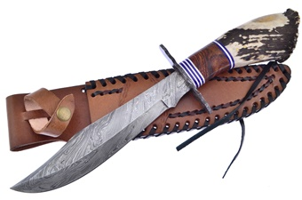 Crown Stag Damascus Bowie (1pc)