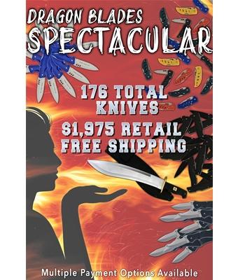 Dragon Blades Spectacular(176pc)