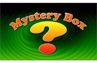 Mystery Box  (1pc)