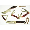 CCN-44133 PRO XTREME (5PCS) [Assorted • Pocket Knives]