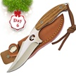 CCN-47381 JIMS 12 DAYS OF CHRISTMAS (1PC) [Whitetail Cutlery • Fixed Blades & Hunters • Skinning Knives]
