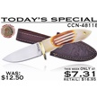 CCN-48118 TODAY'S SPECIAL  (1PC) [Chipaway Cutlery • Fixed Blades & Hunters • Bowies]