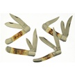 CCN-48542 TORCH BONE BONANZA  (4PCS) [Bone Collector USA • Pocket Knives]