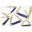 CCN-49132 PASSION FOR PURPLE (5PCS) [Frost Cutlery • Pocket Knives]