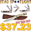 CCN-51606 STAG SPOTLIGHT (4PCS) [Assorted • HTV Items - Assorted ]