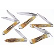 CCN-58184 CASE BONE STAG COLLECTION (5PCS) [Case • Pocket Knives • Premium Knives]