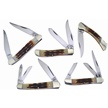 CCN-59128 CPPRHD CREEK ATMN BN COLL (5PCS) [Copperhead Creek • Pocket Knives]