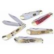 CCN-59178 SADDLEHORN SURPRISE (5PCS) [Steel Warrior • Pocket Knives]
