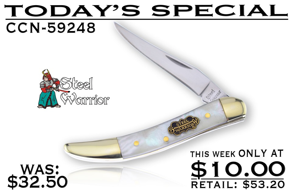 CCN-59248 Today's Special (1pc) [Steel Warrior]