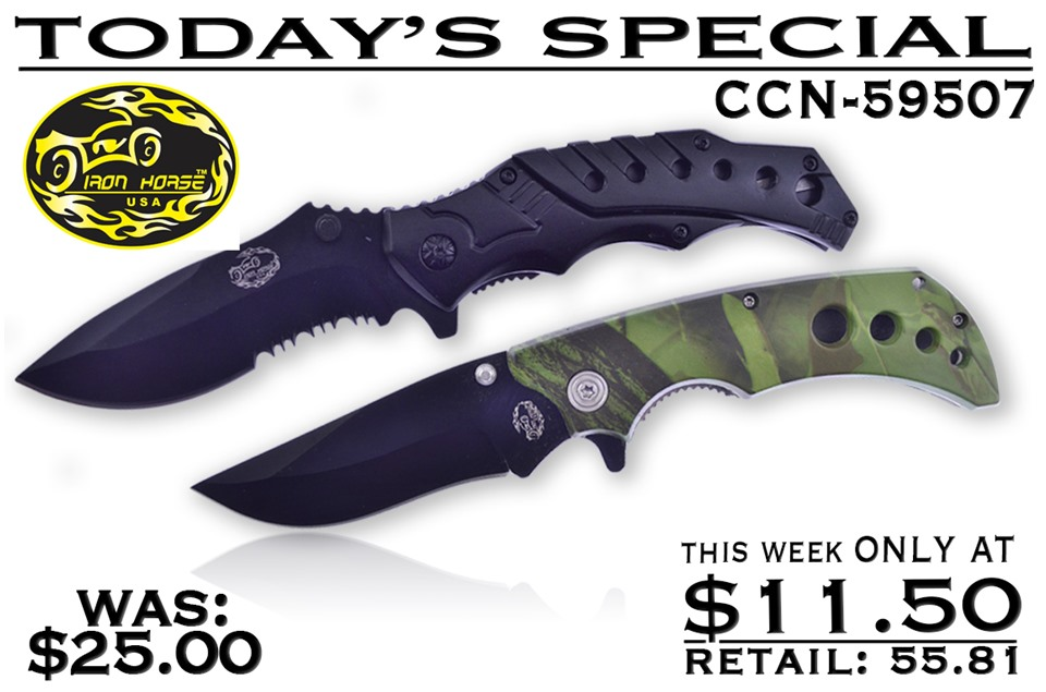 CCN-59507 Today's Special (2pcs) [Iron Horse]